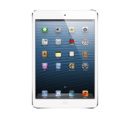 Apple iPad Mini 16GB (WiFi Only)